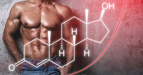 Spoľahlivý výživový doplnok testosterón nedodáva, môže však podporiť jeho prirodzenú tvorbu