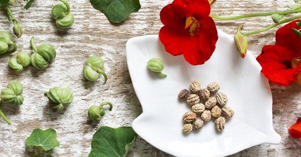 Únik moču u mužov pomôžu riešiť bylinky na inkontinenciu